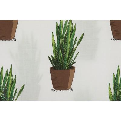 Batiste Coton Linon Sanseviera plante verte playtime soft catus see you at six