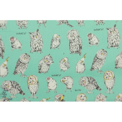 Coton oxford Little Owls on aqua chouette hibou vert menthe kokka