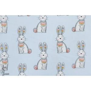Popeline 3 Whishes Woodland tribe lapins bleus