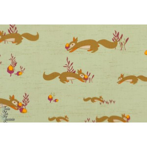 Popeline AGF Squirrels At Play from Autumn vibes