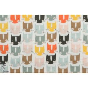Popeline Cats Multi EMI 1403 graphique chat dashwood studio