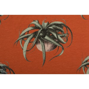 Sweat french terry  SYAS ''Air Plant Spice''