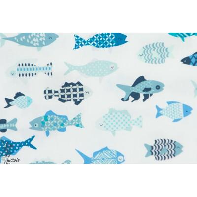 Popeline Agf School of fish poisson bleu