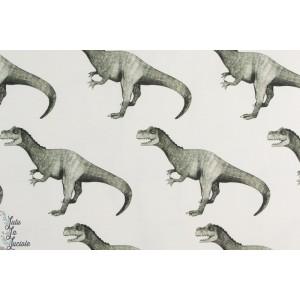 Jersey bio story of  Roo Rex Light dinosaure garçon enfant