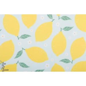 Lycra Maillot de Bain Lemon tygdrommar citron ete plage soleil mer femme