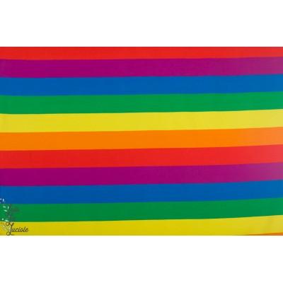 jersey Bio rainbow by Ernest rayé arc en ciel