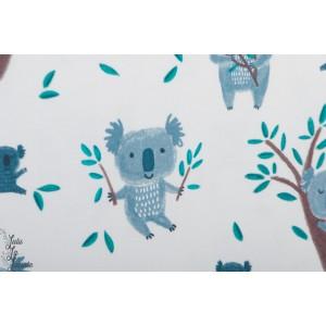 Jersey bio Koalabears Lillestoff