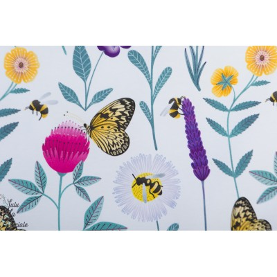 Jersey Bio Fjaril och humbla pa Blomma by ernest fleur papillon nature