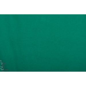 Bord Cote Bio Chat Chocolat vert Evergreen
