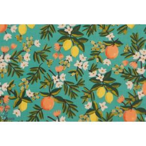 Popeline CS Primavera Citrus Floral