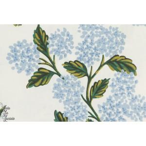 Popeline Cotton Steel hydrangea creme et bleu