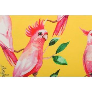 Jersey bio Ommellinen Kaijat Jaune oiseua peroquet aras rose