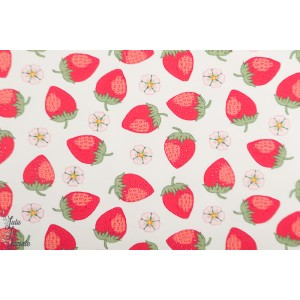 Jersey Vintage Botanical - fraise fond blanc